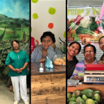 My Journey Through Three Impact Success Stories in Mexico