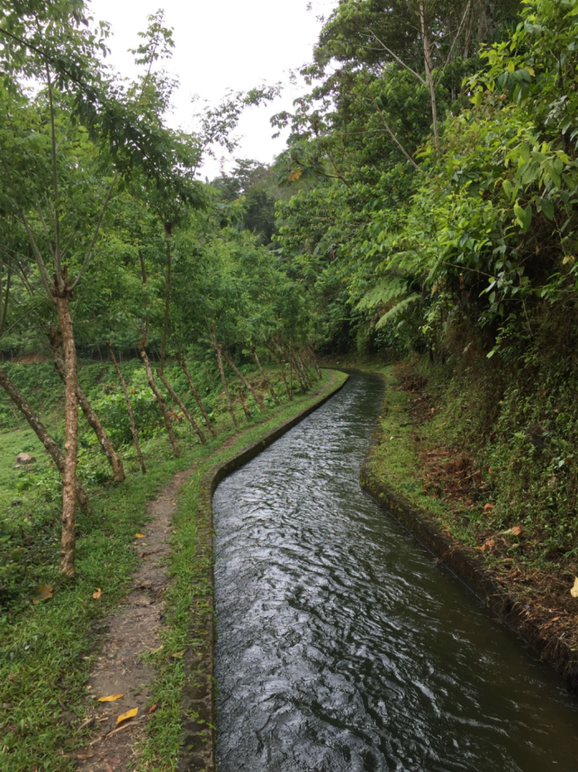 Canal of water built as part of the hydro project near Omoa, Honduras