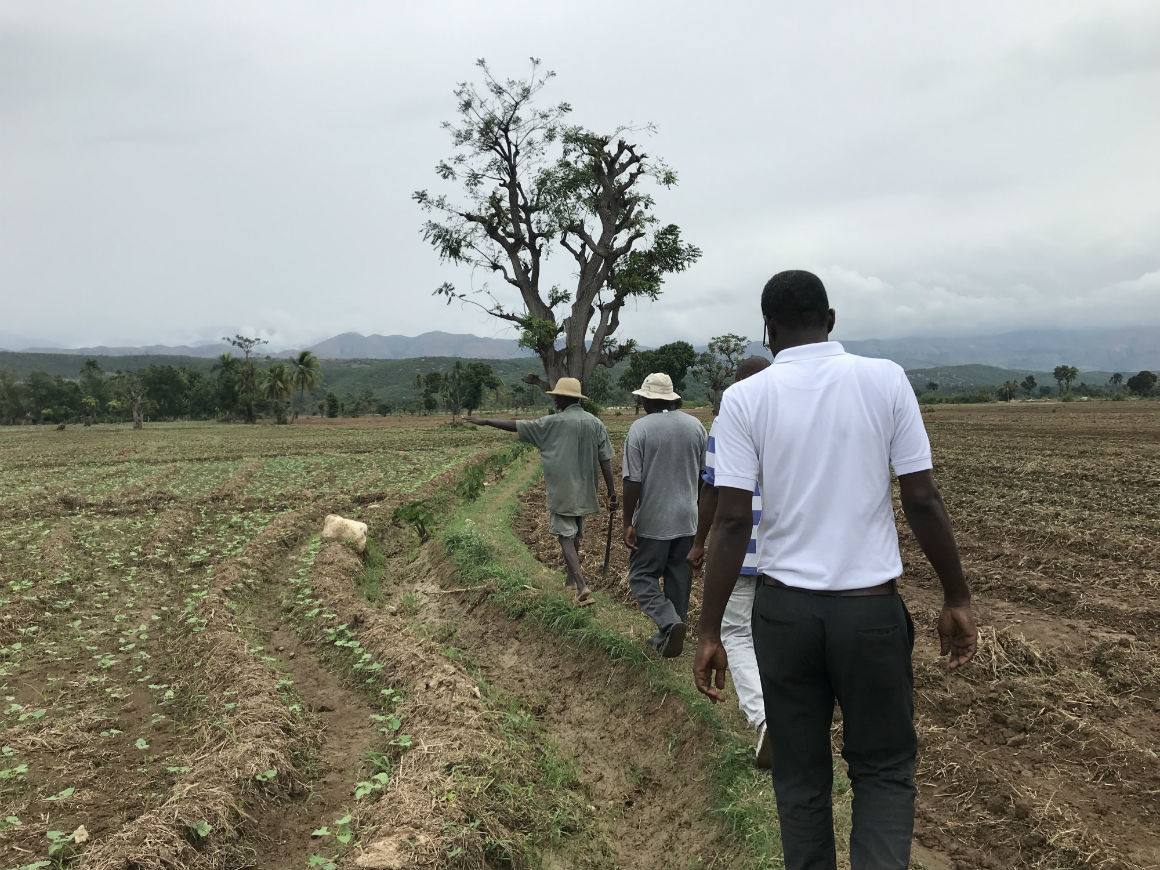 Farmers in the Arbonite Valley in Haiti.