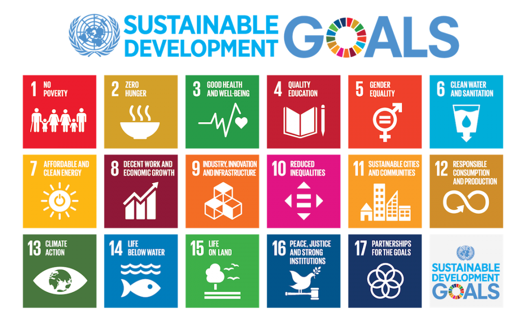 Investing for Climate Action to Advance the SDGs: Views from the Caribbean