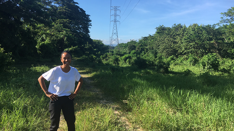 Jamaica's Renewable Energy Transformation: Angella Rainford's Story