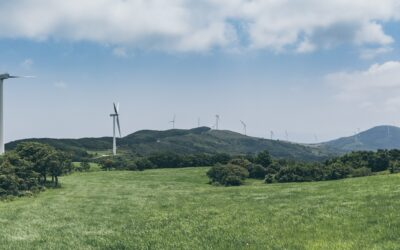 Wind Comes Full Circle through Community-funded Wind Energy Projects